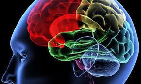 رابطه مغز و هولوگرام