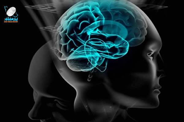 مغز انسان به عنوان یک هولوگرام